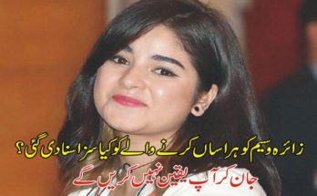 3 years imprisonment for harassment of Zaira Waseem