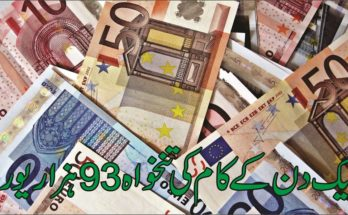 One day's work salary is 93 thousand euros